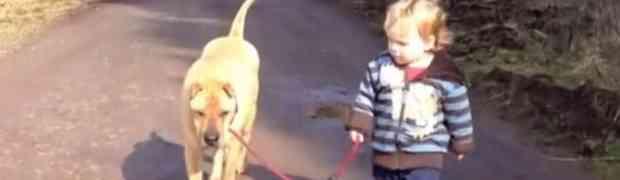 Fantastičan video: Pogledajte zašto bi svako dijete trebalo odrasti uz psa!