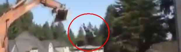 Ovo je najluđi ringišpil koji ćete ikada vidjeti (VIDEO)
