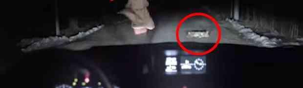 Djevojka autom udarila psa, a kada mu je prišla desilo se nešto nevjerovatno!