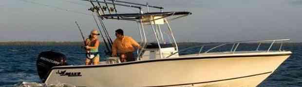 Bili su uzbuđeni kada su vidjeli delfina pored njihovog broda, no onda se dogodilo OVO!