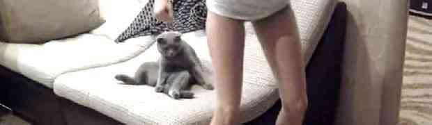 Skinula se u gaćice i počela seksi ples ispred svog mačka. Njegova reakcija nasmijala je MILIONE! (VIDEO)