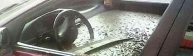 Napunio je ovaj auto sa betonom, a razlog OSVETA! (VIDEO)