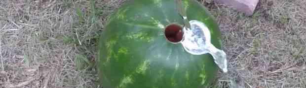 Probušio je rupu u lubenici i u nju istresao TOPLJENI ALUMINIJUM... Ovako nešto nikada nisam vidio! (VIDEO)