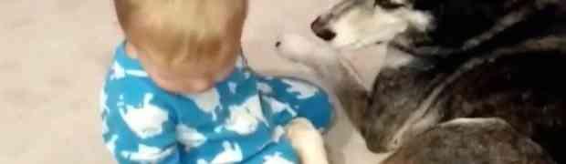 Dječak je jedva držao oči otvorenim, a ono što se desilo na kraju će vam osvojiti srce (VIDEO)