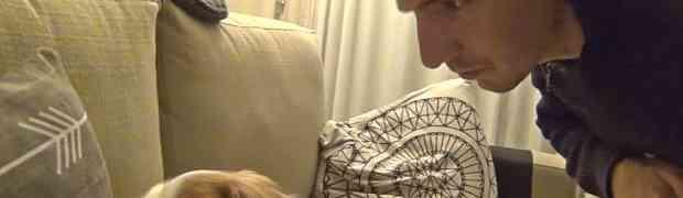 Njegov pas glasno hrče i budi ga svakog jutra. Ono što mu je jednog dana uradio vlasnik nasmijalo je MILIONE LJUDI (VIDEO)