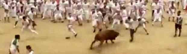 Pustili su bijesnog bika među stotinu ljudi. Nakon poteza ovog čovjeka, cijeli stadion se digao na noge! (VIDEO)