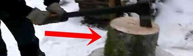 Ovaj tip će vam pokazati kako na NAJBOLJI MOGUĆI NAČIN isjeći drvo sjekirom! Ovako nešto nikada nisam vidio! (VIDEO)