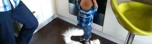 Mali dječak prišao je vrelom šporetu i krenuo da ga dodirne rukama, no dobro obratite pažnju šta će uraditi MAČKA! (VIDEO)