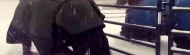Izveo je iz štale svoja dva konja napolje na snijeg. Ono što su uradili na 0:29 NASMIJALO JE CIJELI INTERNET! (VIDEO)