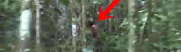 On je najusamljeniji čovjek na svijetu: Posljednji član nestalog plemena snimljen u brazilskoj džungli (VIDEO)
